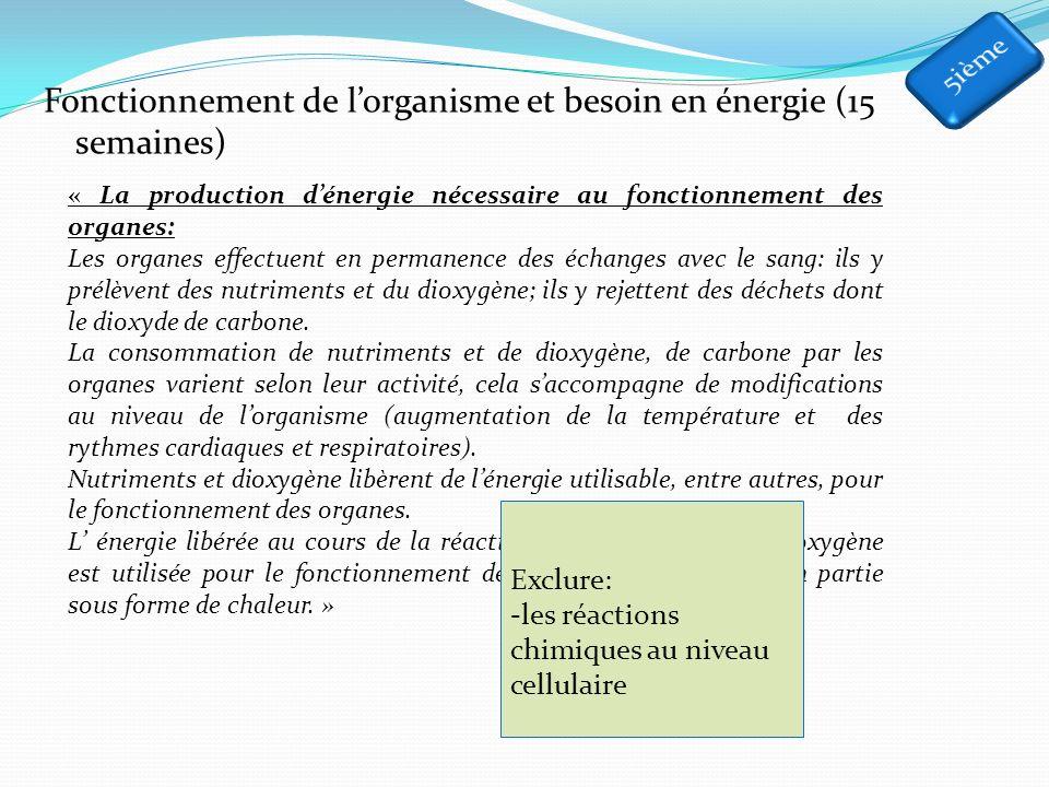 Fonctionnement de l'organisme et besoin en énergie (15 semaines)