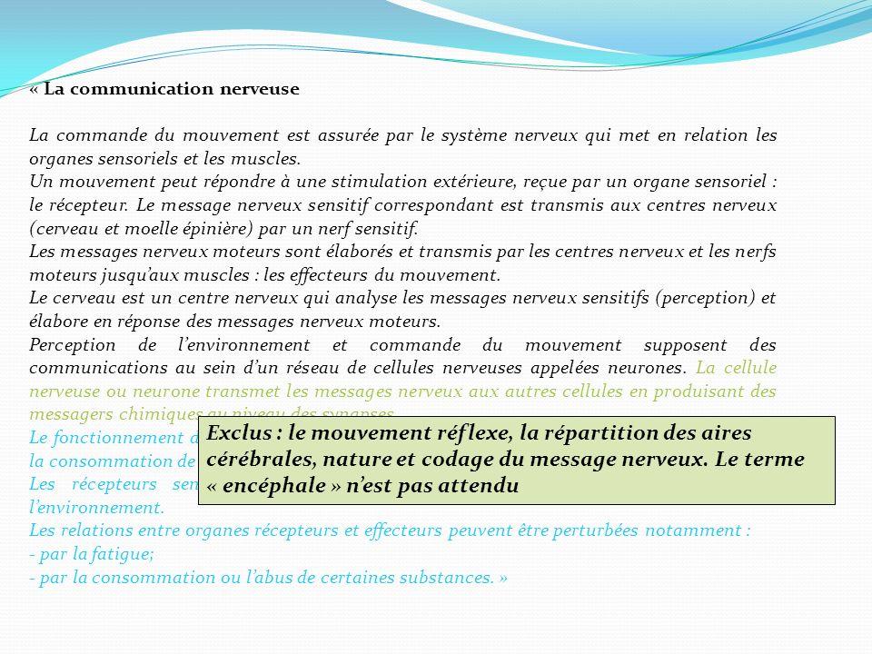 « La communication nerveuse