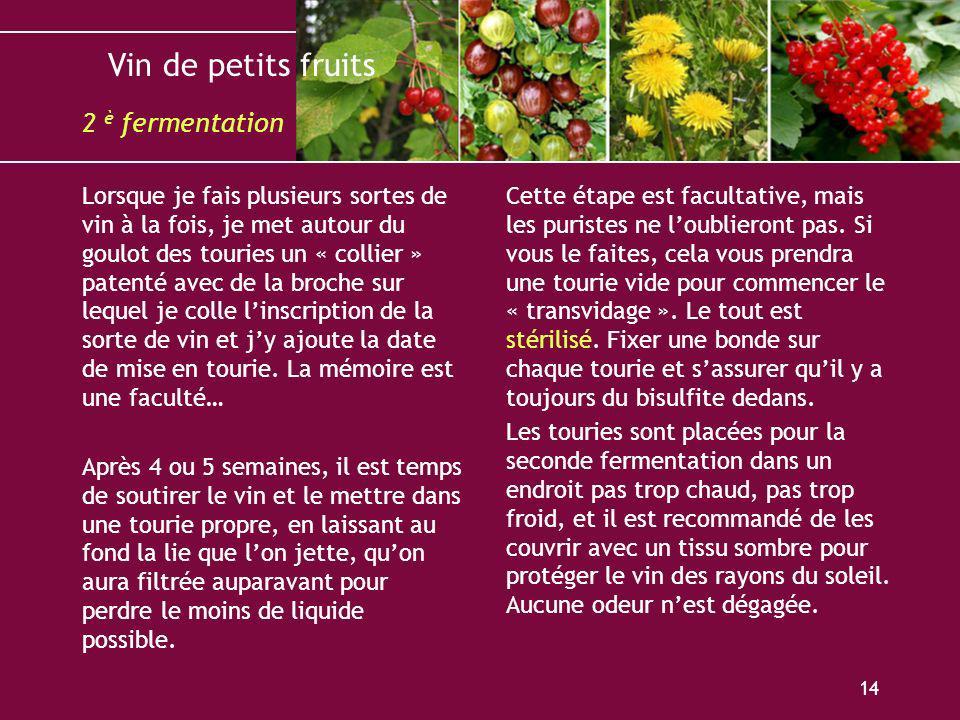 2 è fermentation