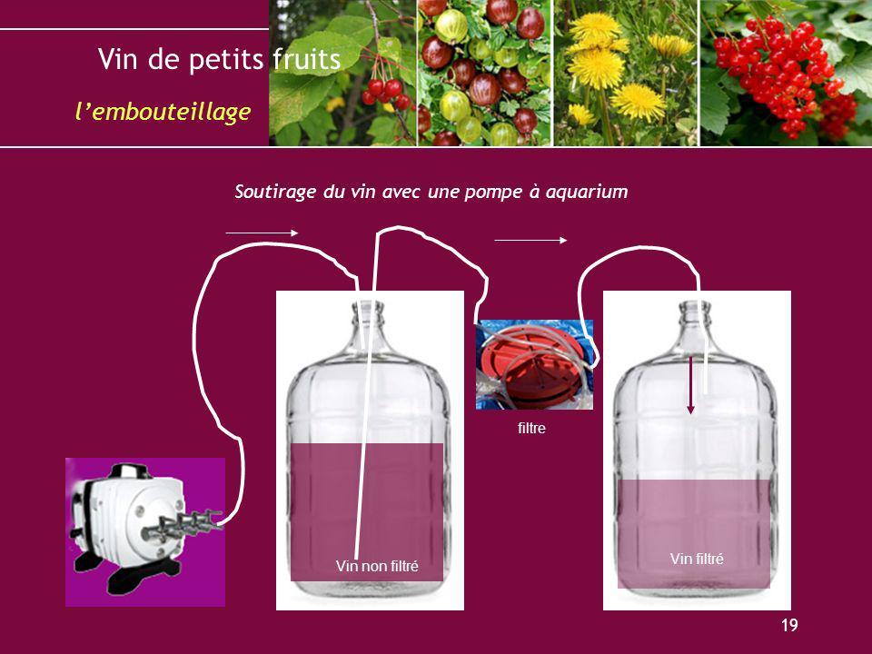 l'embouteillage Soutirage du vin avec une pompe à aquarium filtre