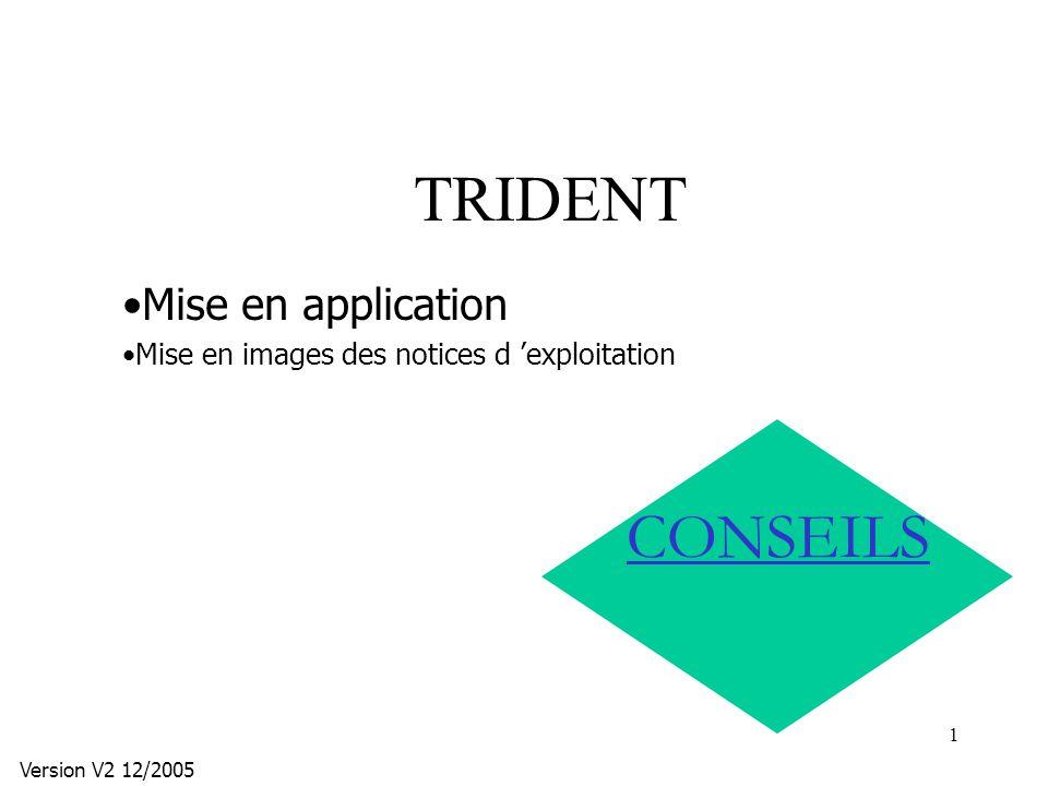 TRIDENT CONSEILS Mise en application