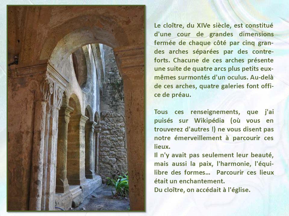 Le cloître, du XIVe siècle, est constitué d une cour de grandes dimensions fermée de chaque côté par cinq gran-des arches séparées par des contre-forts. Chacune de ces arches présente une suite de quatre arcs plus petits eux-mêmes surmontés d un oculus. Au-delà de ces arches, quatre galeries font offi-ce de préau.