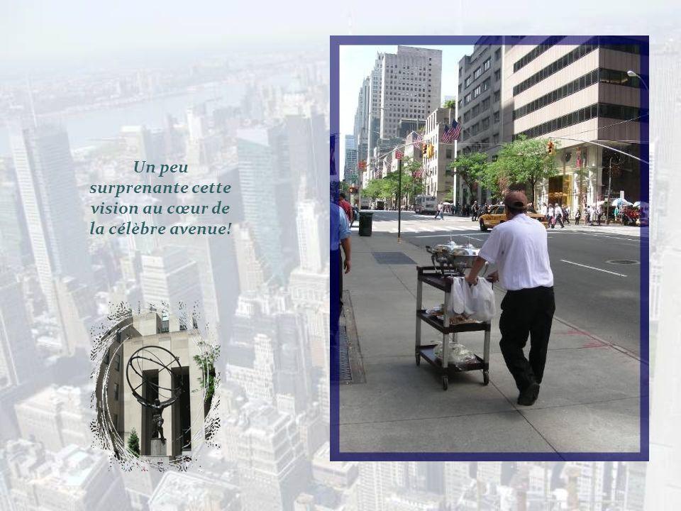 Un peu surprenante cette vision au cœur de la célèbre avenue!