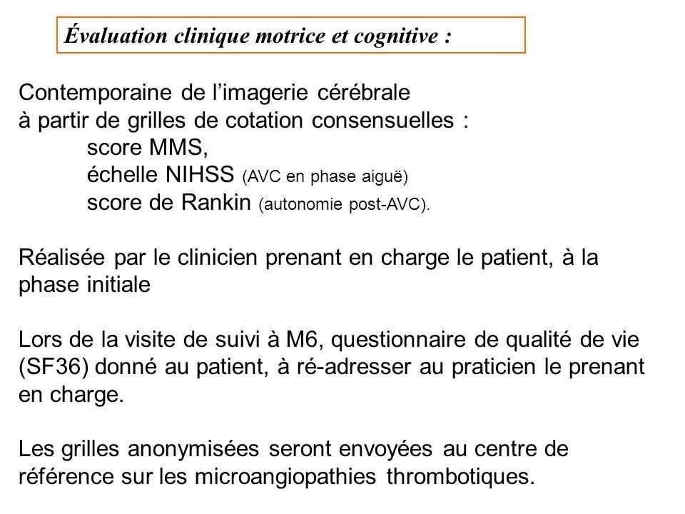 Évaluation clinique motrice et cognitive :