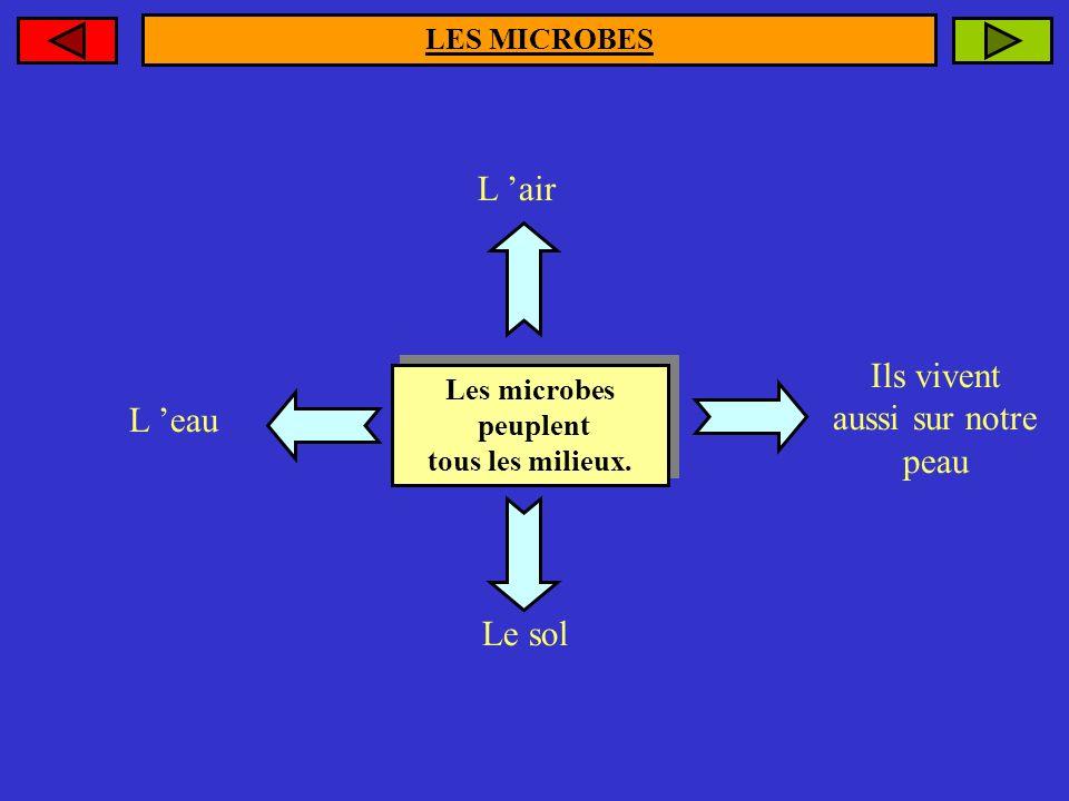 Les microbes peuplent tous les milieux.