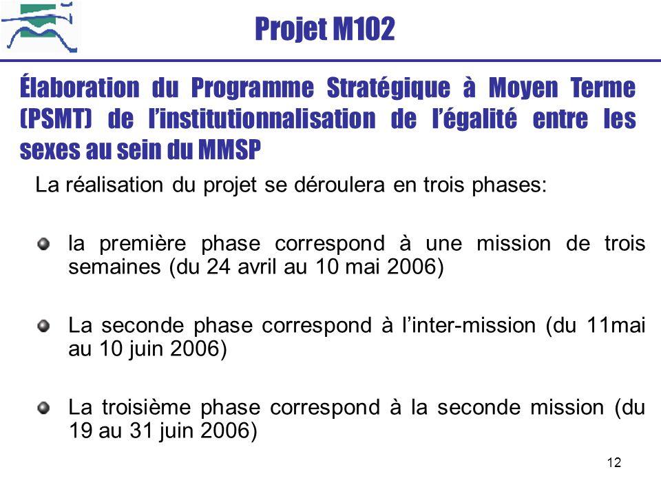 Projet M102 Élaboration du Programme Stratégique à Moyen Terme (PSMT) de l'institutionnalisation de l'égalité entre les sexes au sein du MMSP.