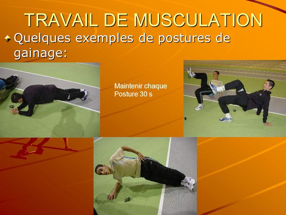 TRAVAIL DE MUSCULATION