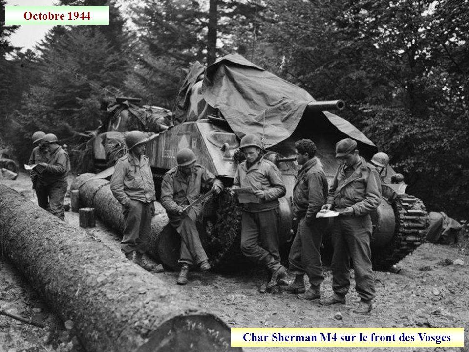 Char Sherman M4 sur le front des Vosges