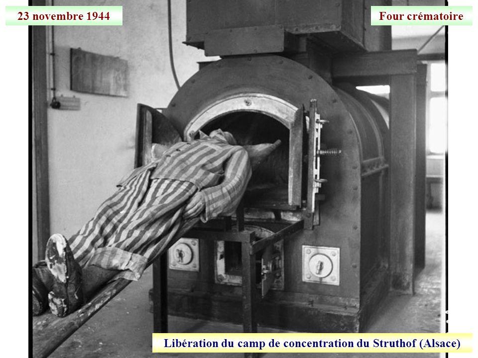 Libération du camp de concentration du Struthof (Alsace)