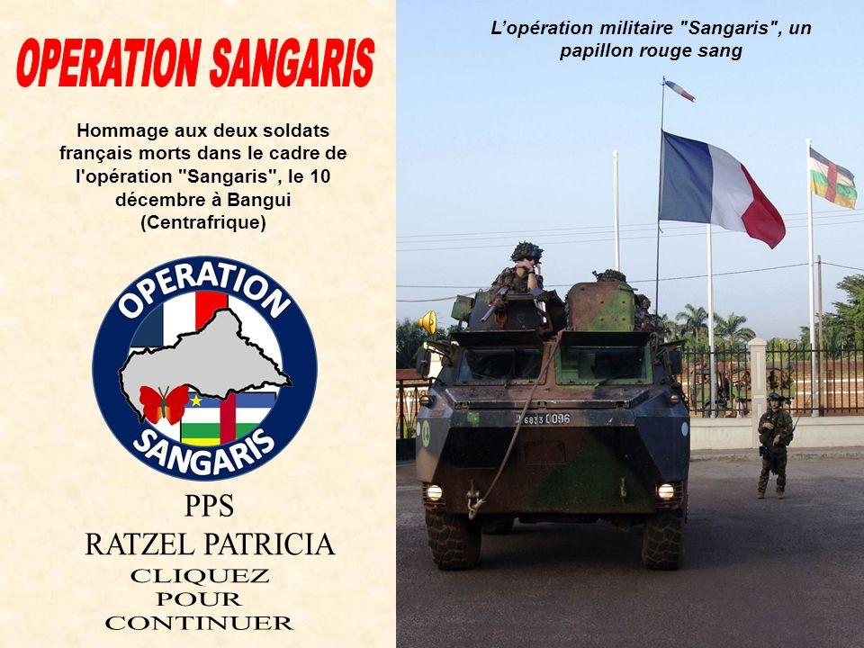 L'opération militaire Sangaris , un papillon rouge sang