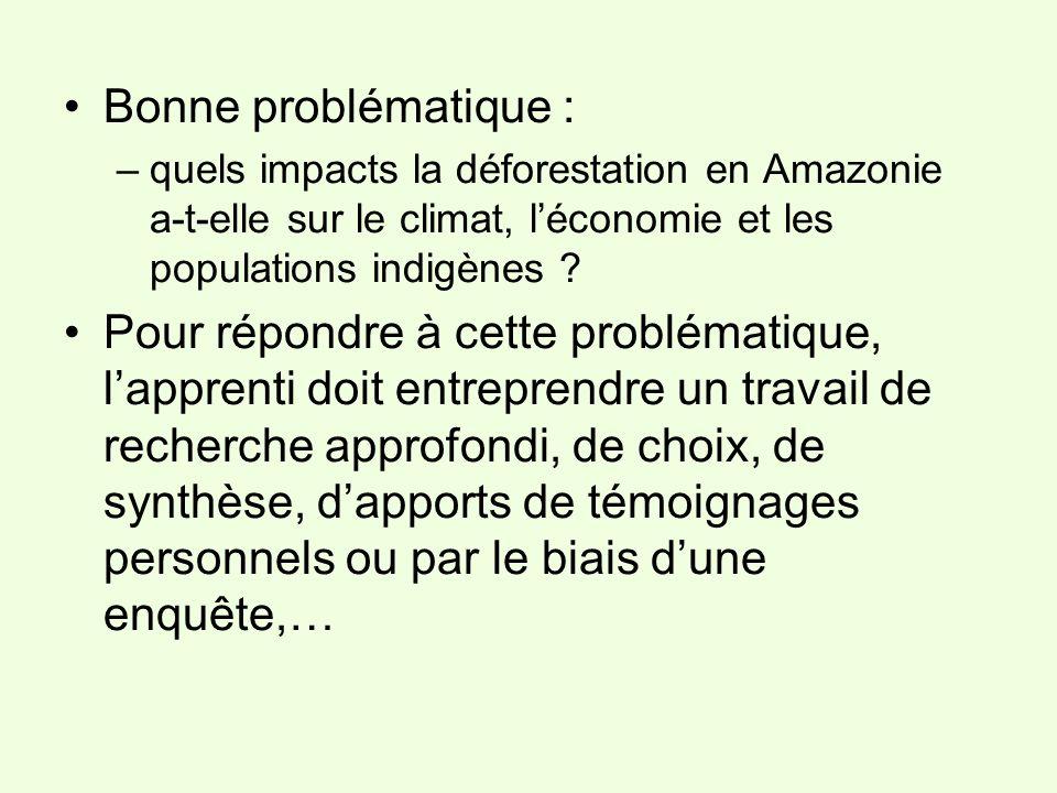 Bonne problématique : quels impacts la déforestation en Amazonie a-t-elle sur le climat, l'économie et les populations indigènes