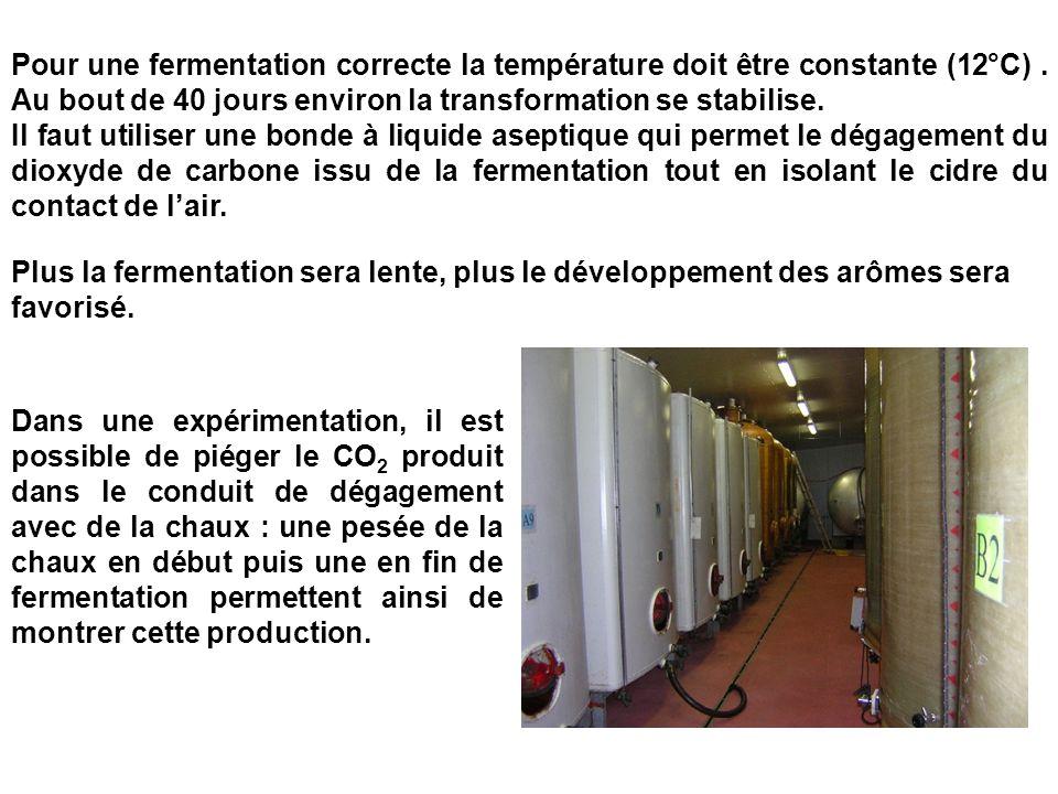 Pour une fermentation correcte la température doit être constante (12°C) . Au bout de 40 jours environ la transformation se stabilise.