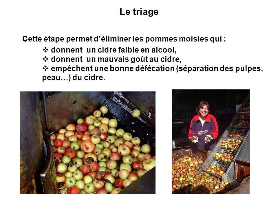 Le triage Cette étape permet d'éliminer les pommes moisies qui :