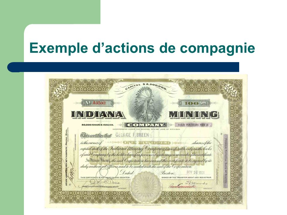 Exemple d'actions de compagnie