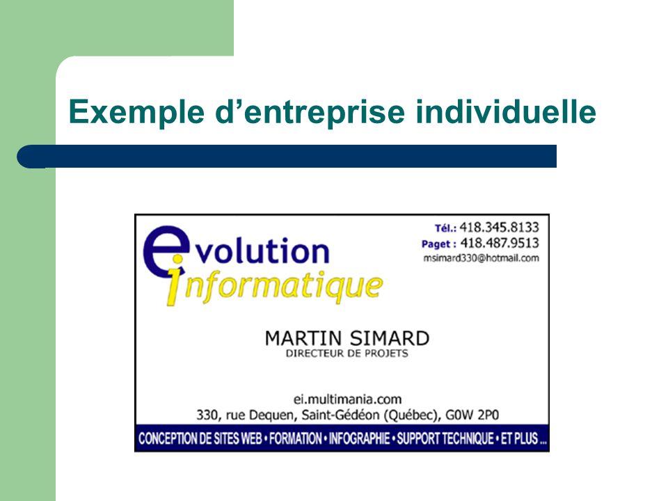 Exemple d'entreprise individuelle