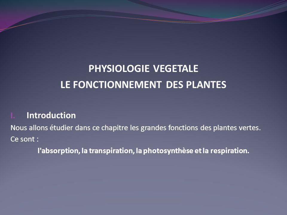 LE FONCTIONNEMENT DES PLANTES