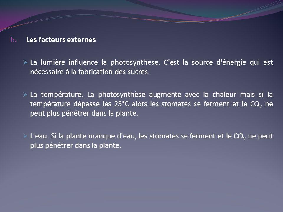 Les facteurs externes. La lumière influence la photosynthèse. C est la source d énergie qui est nécessaire à la fabrication des sucres.
