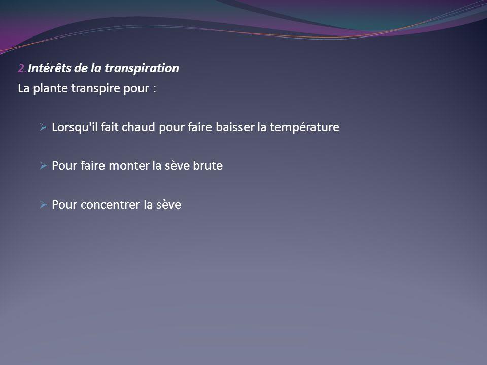 Intérêts de la transpiration. La plante transpire pour : Lorsqu il fait chaud pour faire baisser la température.