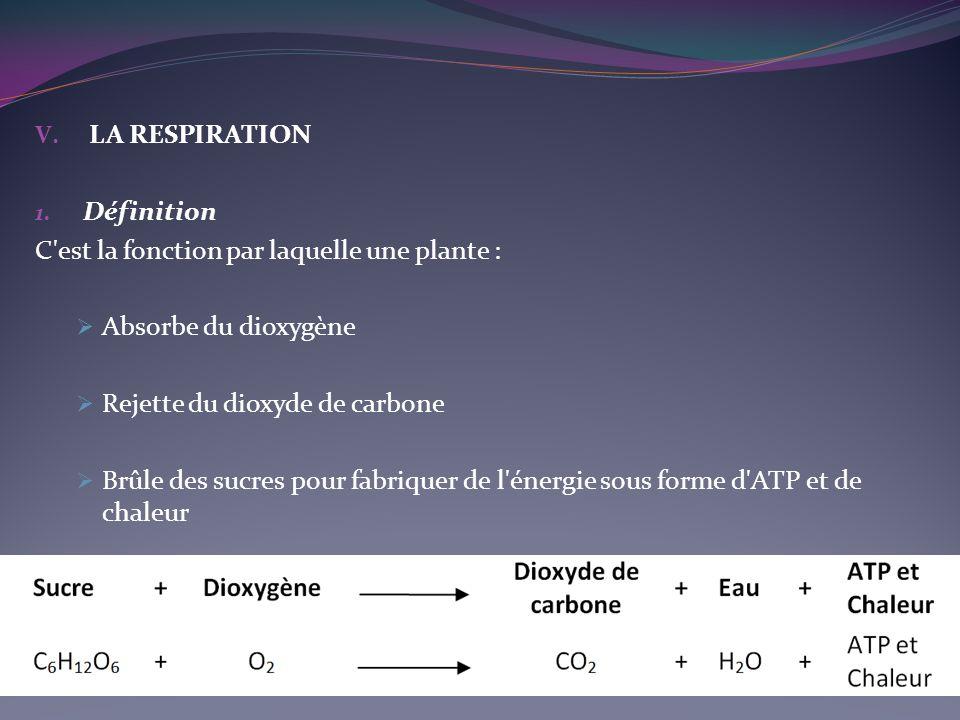 LA RESPIRATION. Définition. C est la fonction par laquelle une plante : Absorbe du dioxygène. Rejette du dioxyde de carbone.