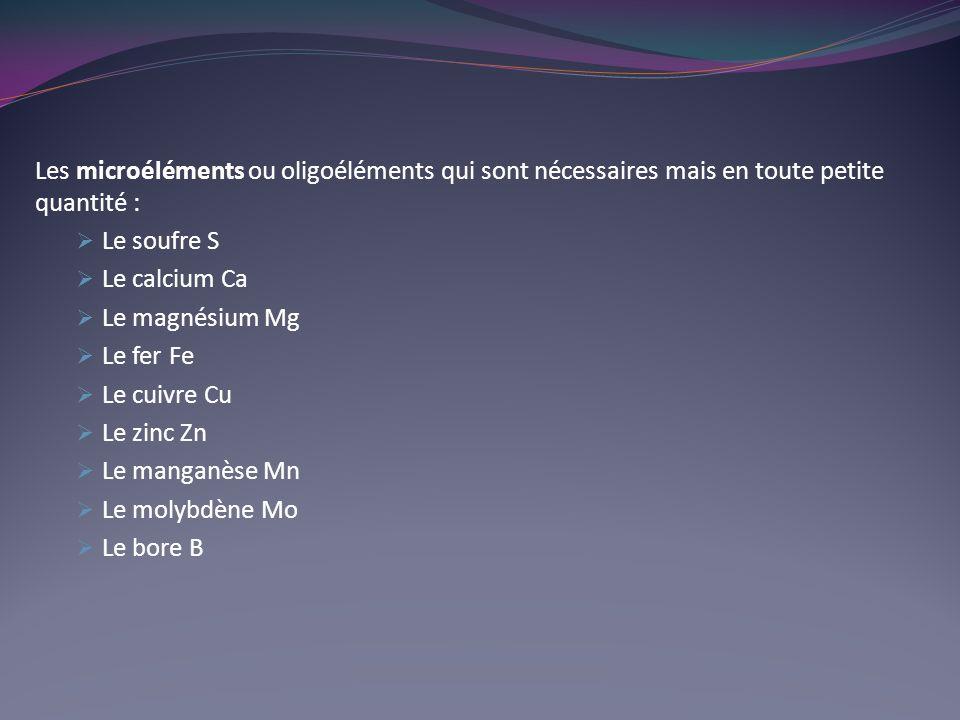 Les microéléments ou oligoéléments qui sont nécessaires mais en toute petite quantité :