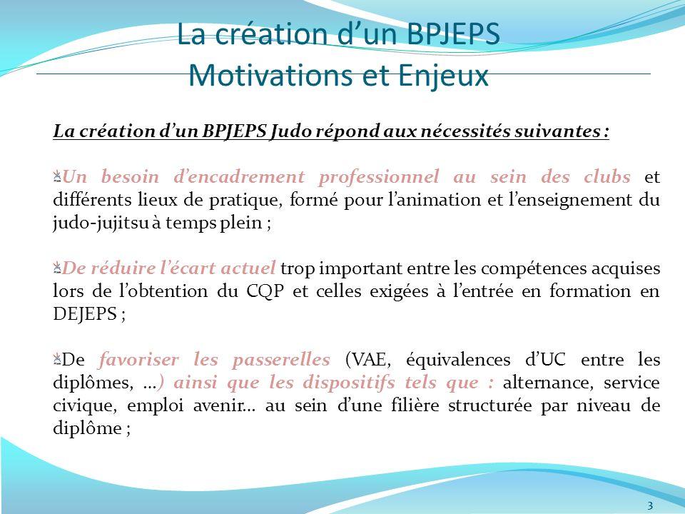 La création d'un BPJEPS Motivations et Enjeux