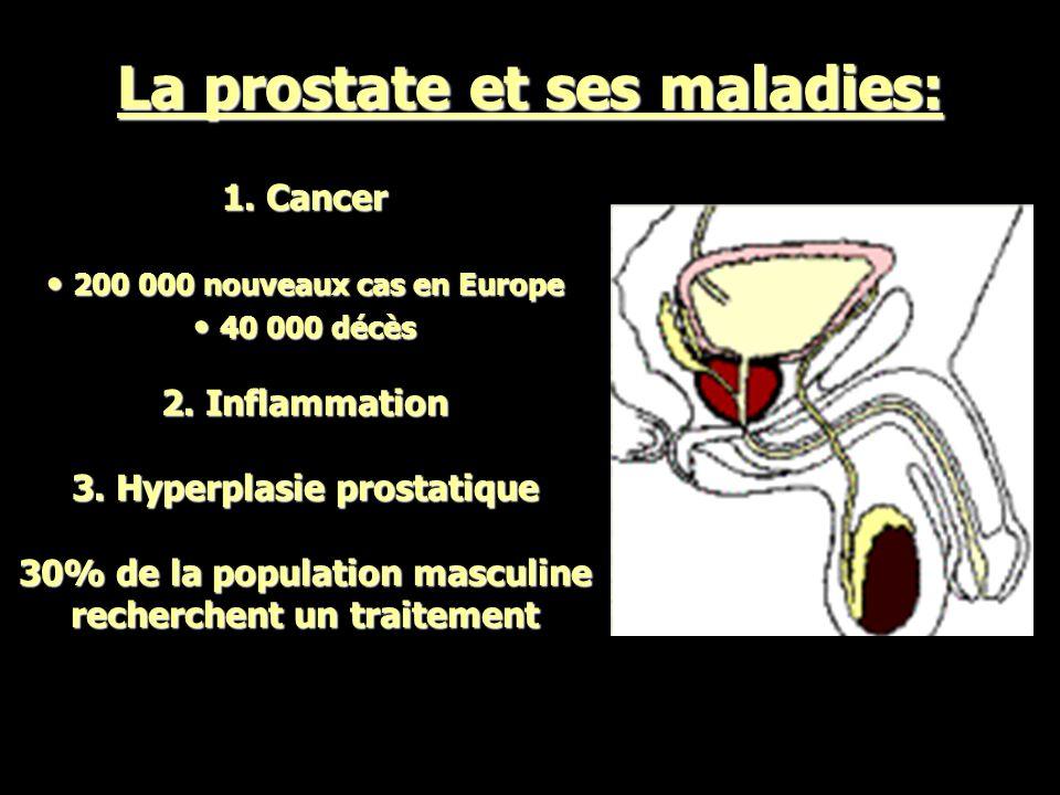 La prostate et ses maladies: