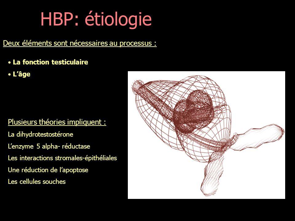 HBP: étiologie Deux éléments sont nécessaires au processus :
