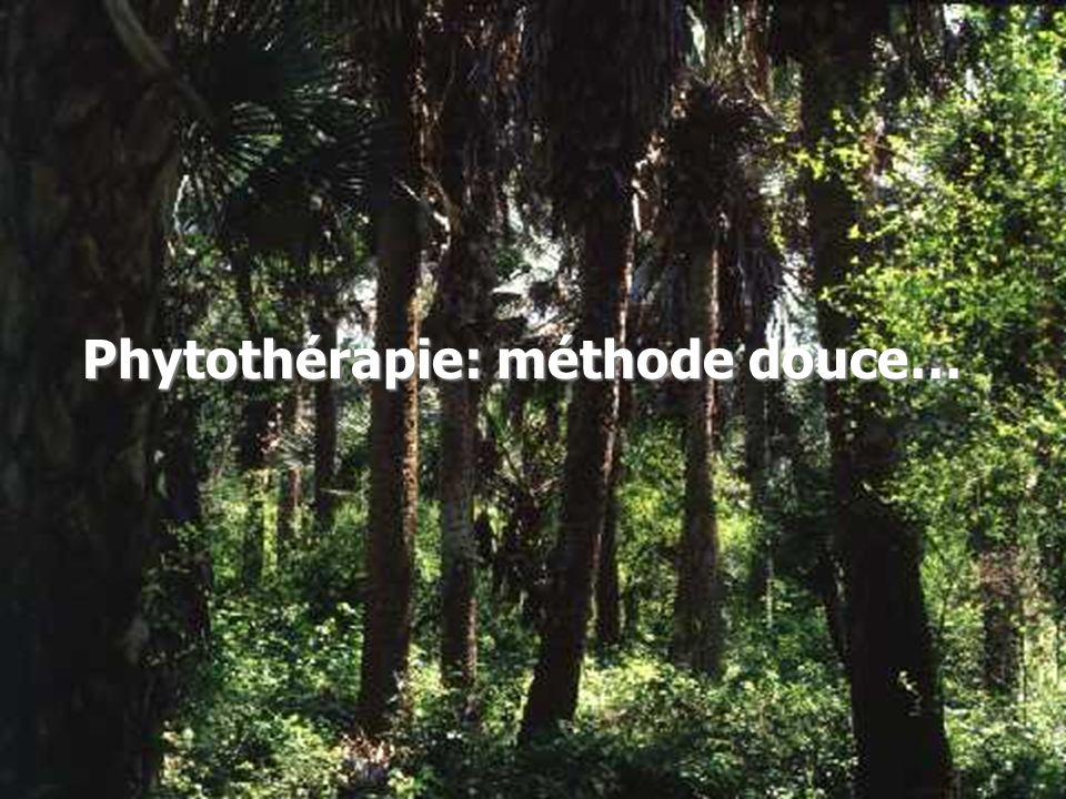 Phytothérapie: méthode douce…