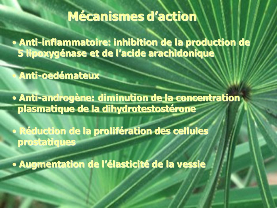 Mécanismes d'action Anti-inflammatoire: inhibition de la production de
