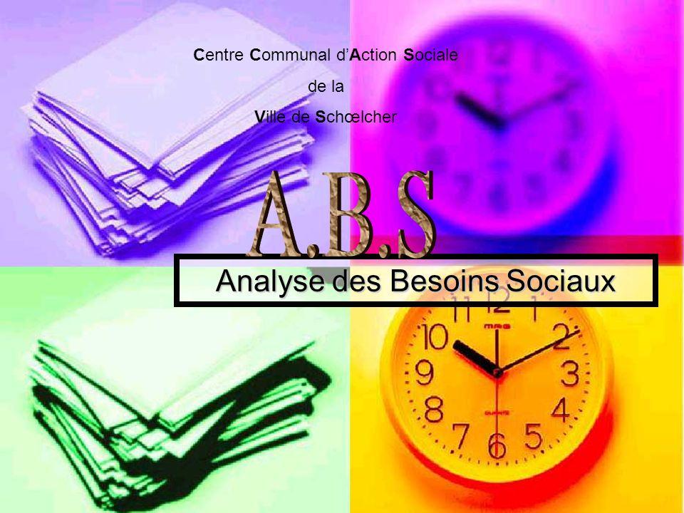 Analyse des Besoins Sociaux