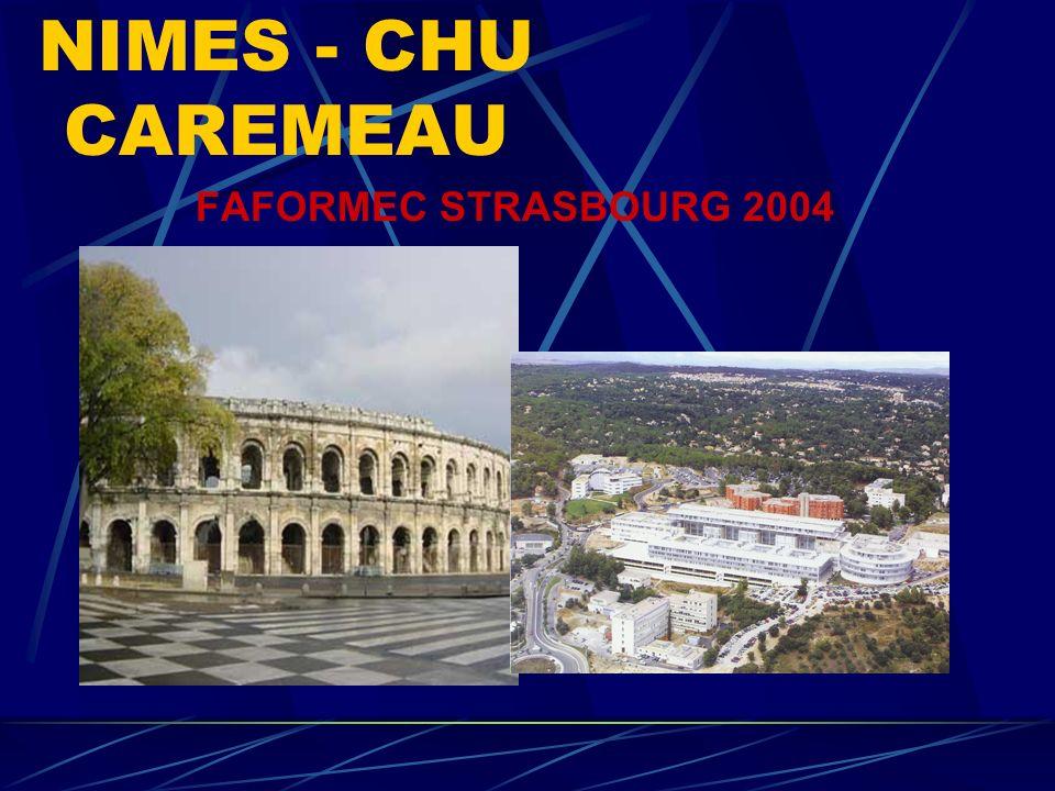 NIMES - CHU CAREMEAU FAFORMEC STRASBOURG 2004