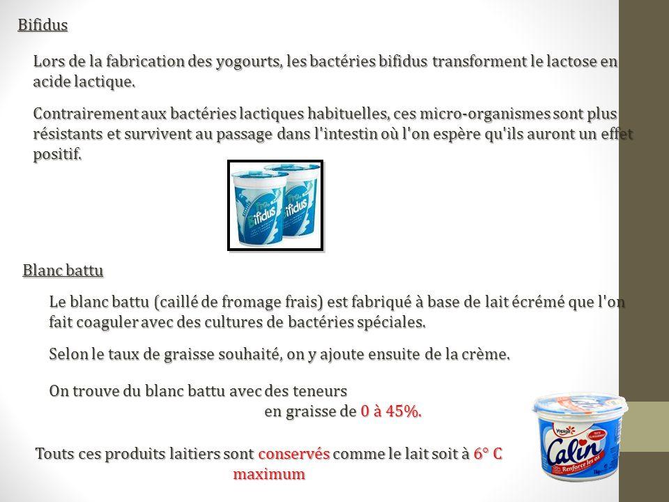BifidusLors de la fabrication des yogourts, les bactéries bifidus transforment le lactose en acide lactique.
