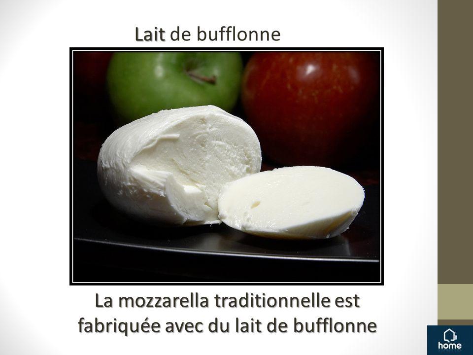 La mozzarella traditionnelle est fabriquée avec du lait de bufflonne