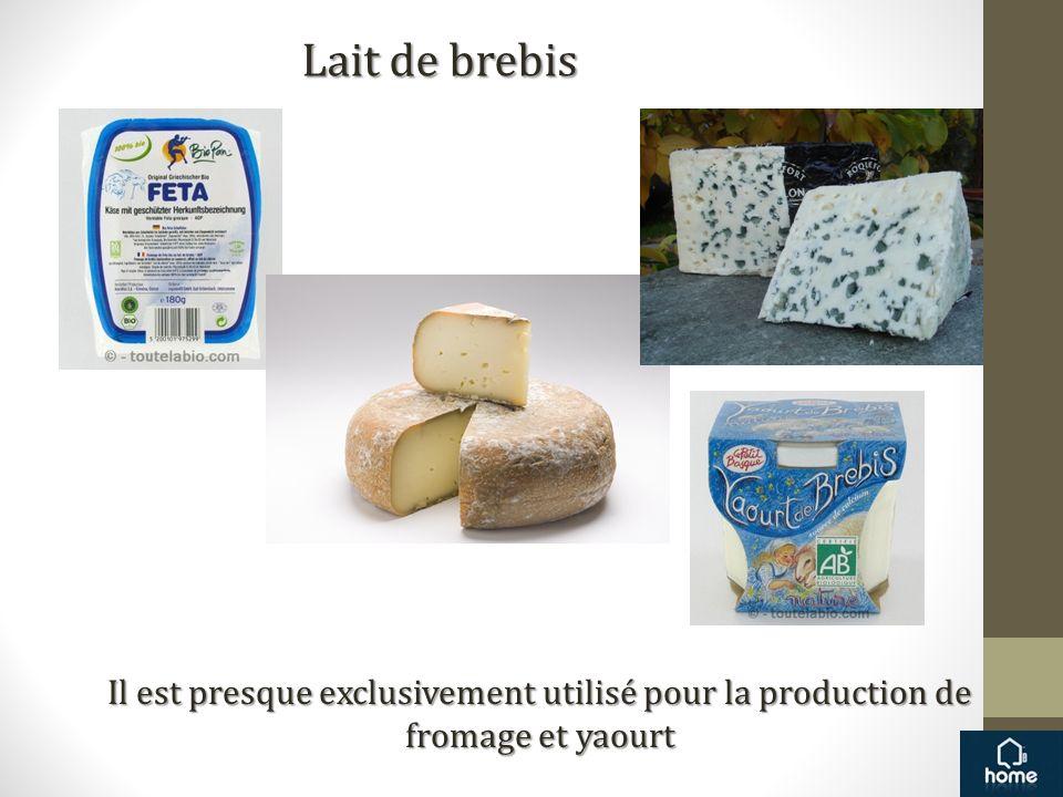 Lait de brebis Il est presque exclusivement utilisé pour la production de fromage et yaourt