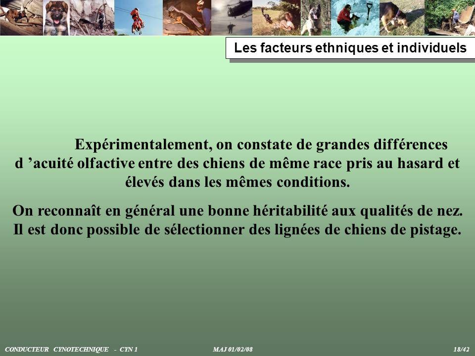 Les facteurs ethniques et individuels
