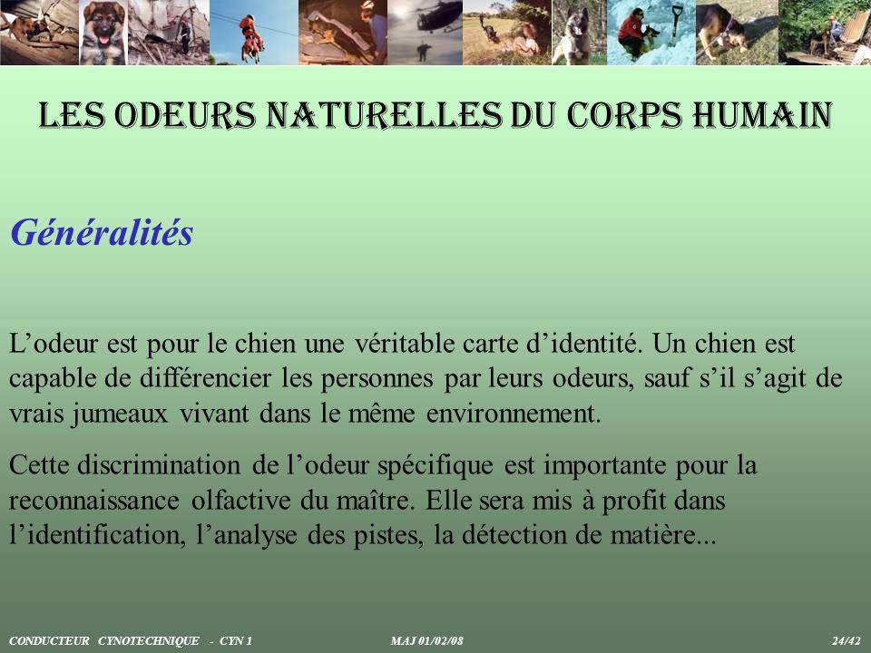 Les odeurs naturelles du corps humain