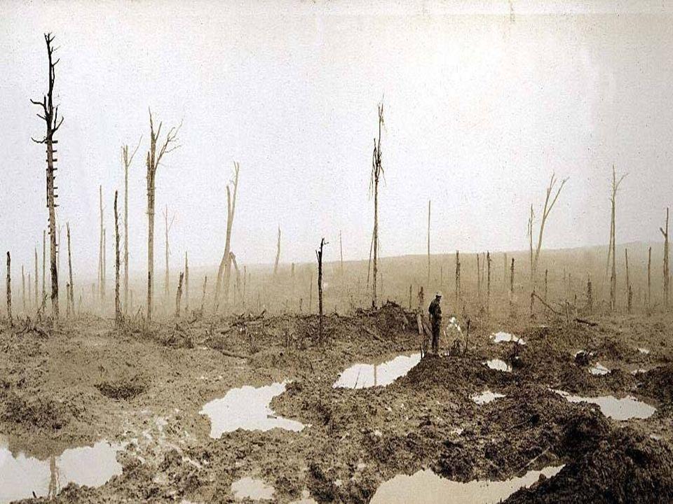 Cependant, l armée belge paie le prix fort : dès le 4 octobre 1918, elle a perdu plus d un cinquième de ses effectifs combattants.