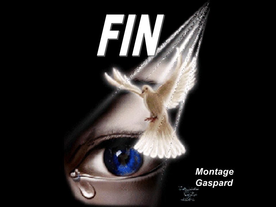 FIN Montage Gaspard