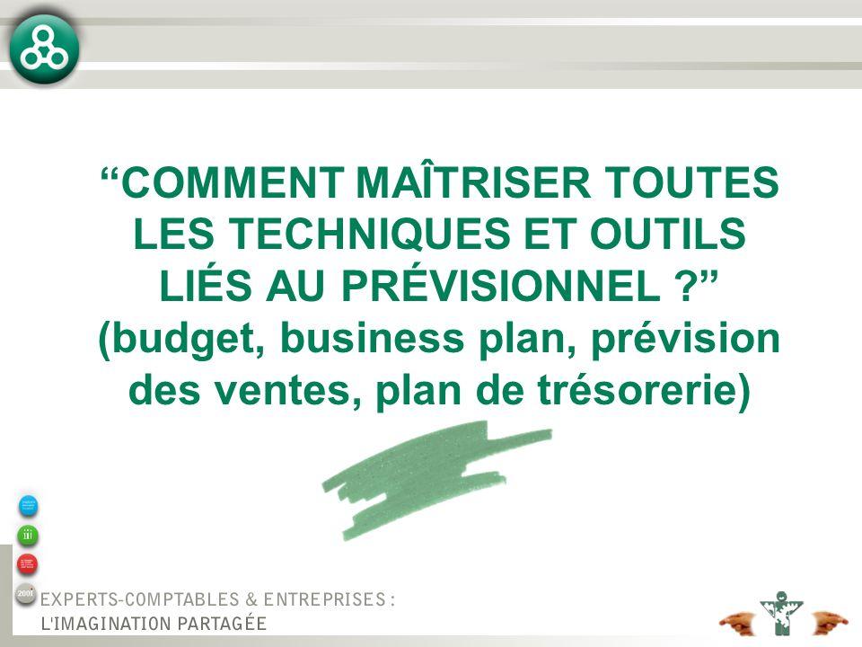COMMENT MAÎTRISER TOUTES LES TECHNIQUES ET OUTILS LIÉS AU PRÉVISIONNEL (budget, business plan, prévision des ventes, plan de trésorerie)