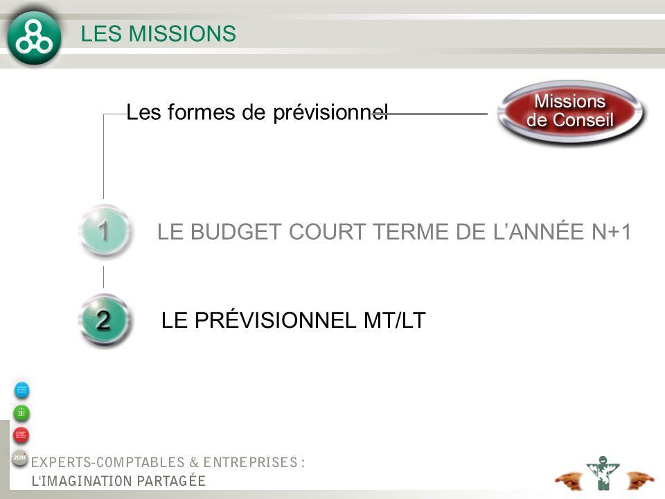 LE BUDGET COURT TERME DE L'ANNÉE N+1