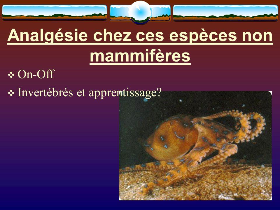 Analgésie chez ces espèces non mammifères