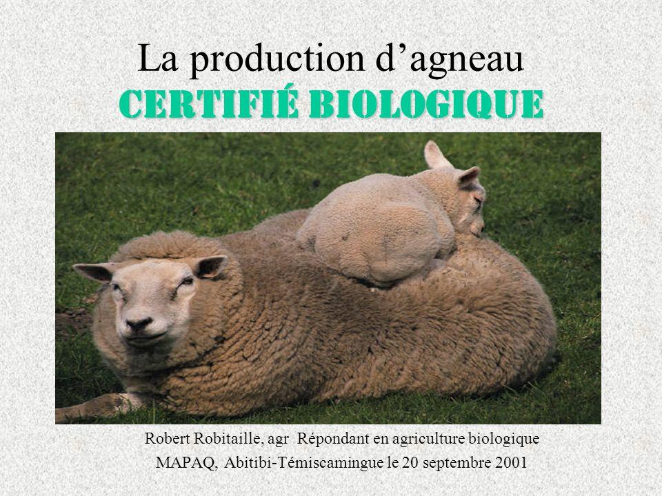 La production d'agneau certifié biologique