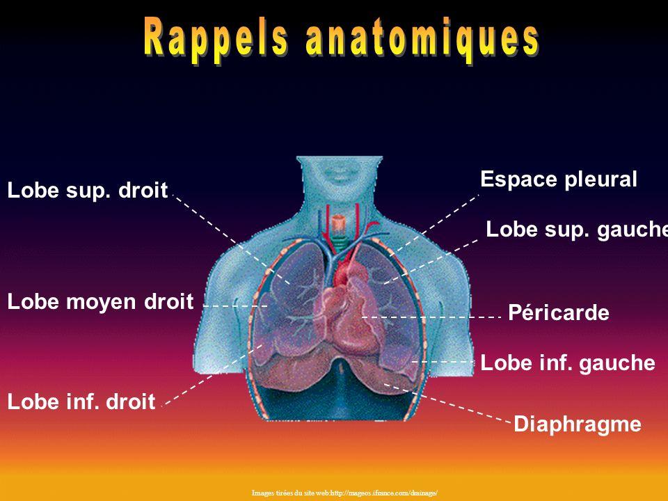 Rappels anatomiques Espace pleural Lobe sup. droit Lobe sup. gauche