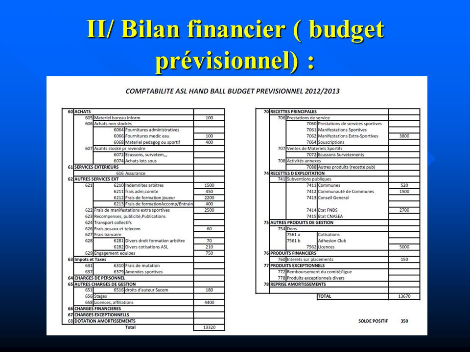 II/ Bilan financier ( budget prévisionnel) :