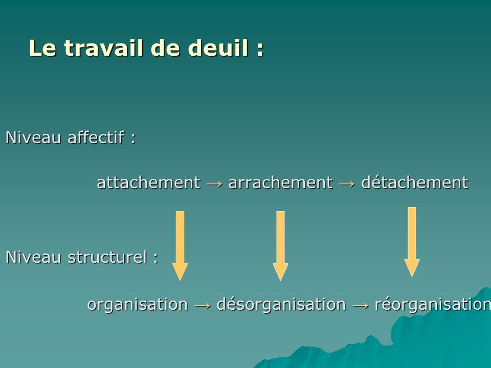 Le travail de deuil : Niveau affectif : Niveau structurel :