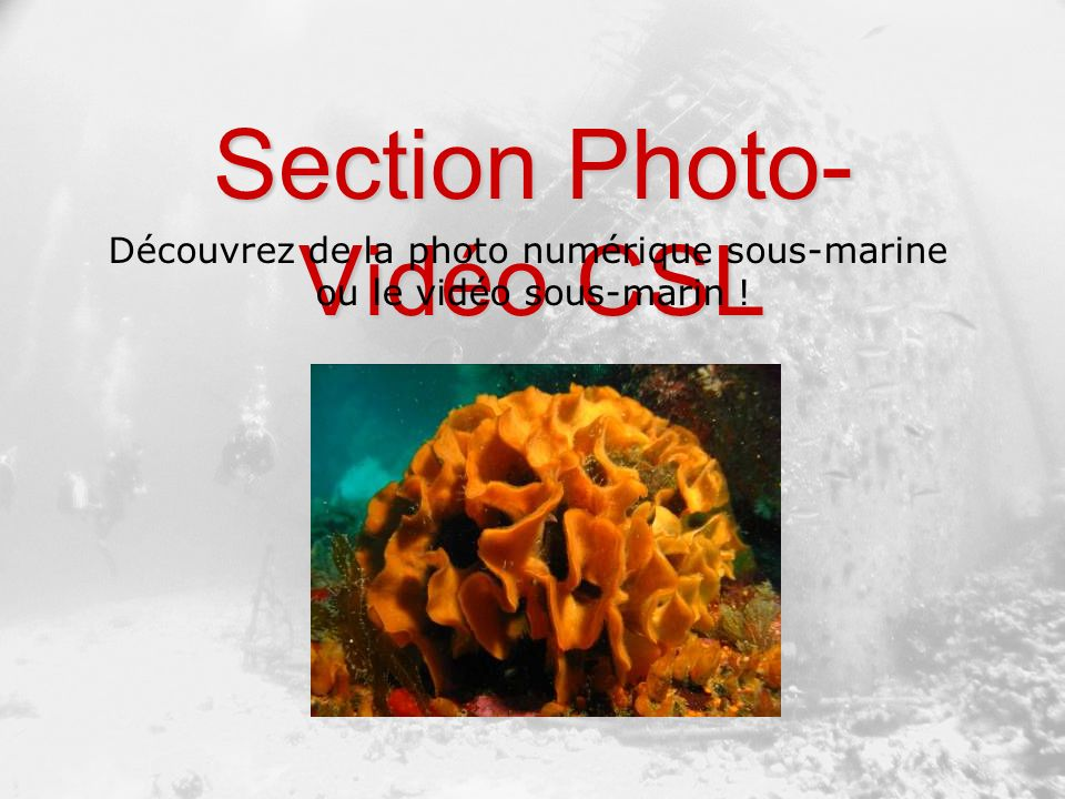 Section Photo-Vidéo CSL