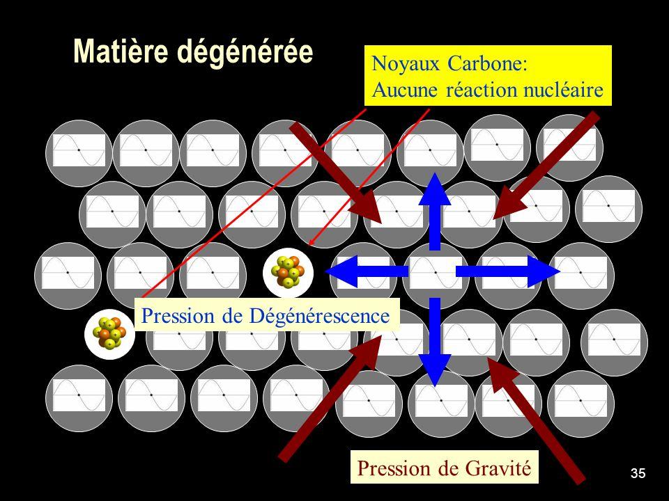 Matière dégénérée Noyaux Carbone: Aucune réaction nucléaire