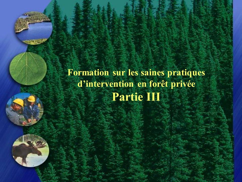 Formation sur les saines pratiques d'intervention en forêt privée Partie III
