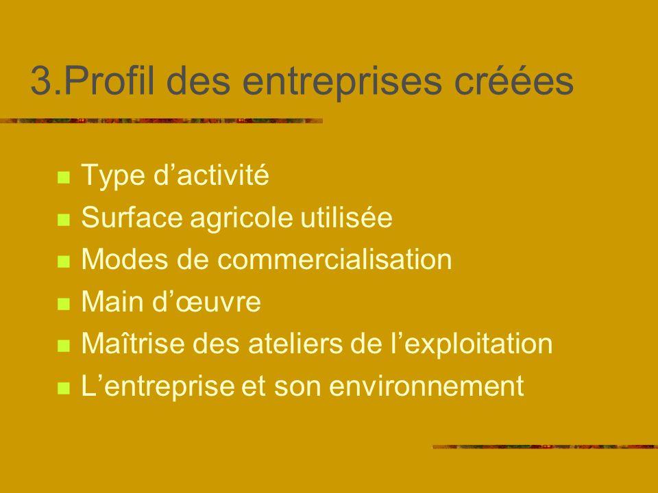 3.Profil des entreprises créées