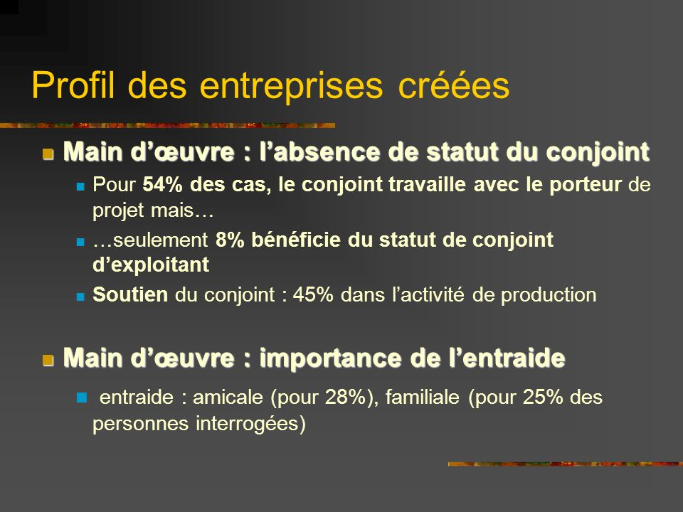 Profil des entreprises créées